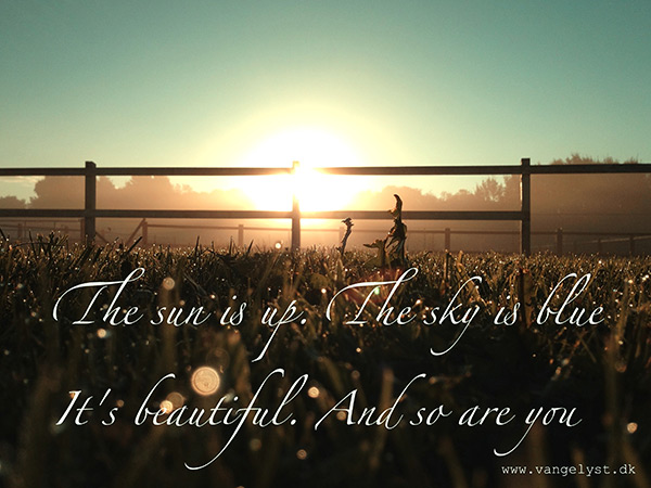 The sun is up morning quote