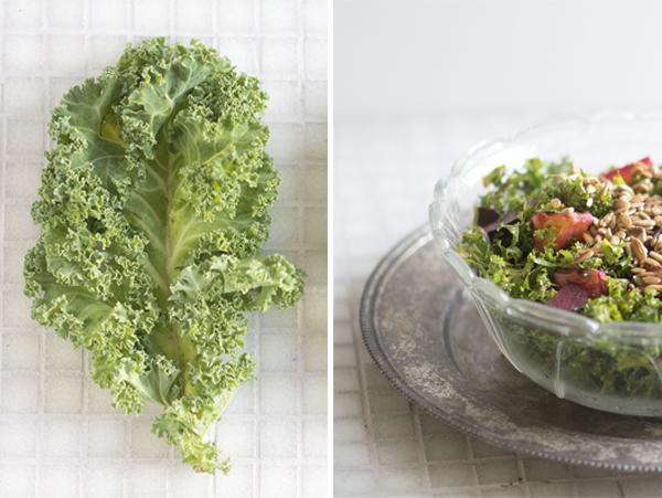 Sund grønkål healthy kale
