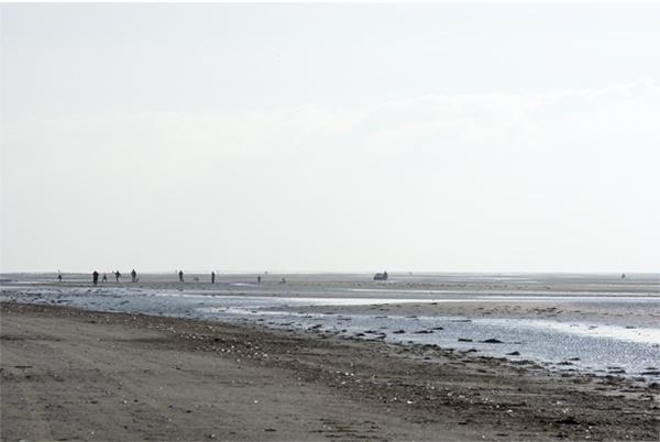 Strand Fanø Vadehavet ferie