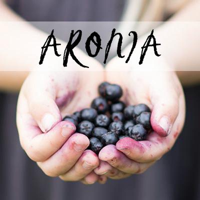 Aronia surbær opskrifter