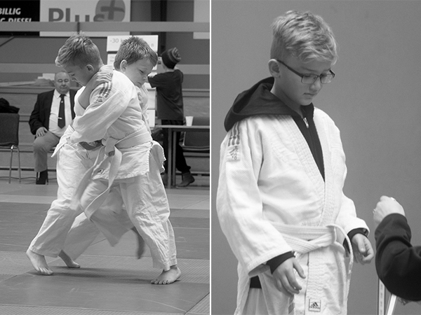 DM i judo 2013
