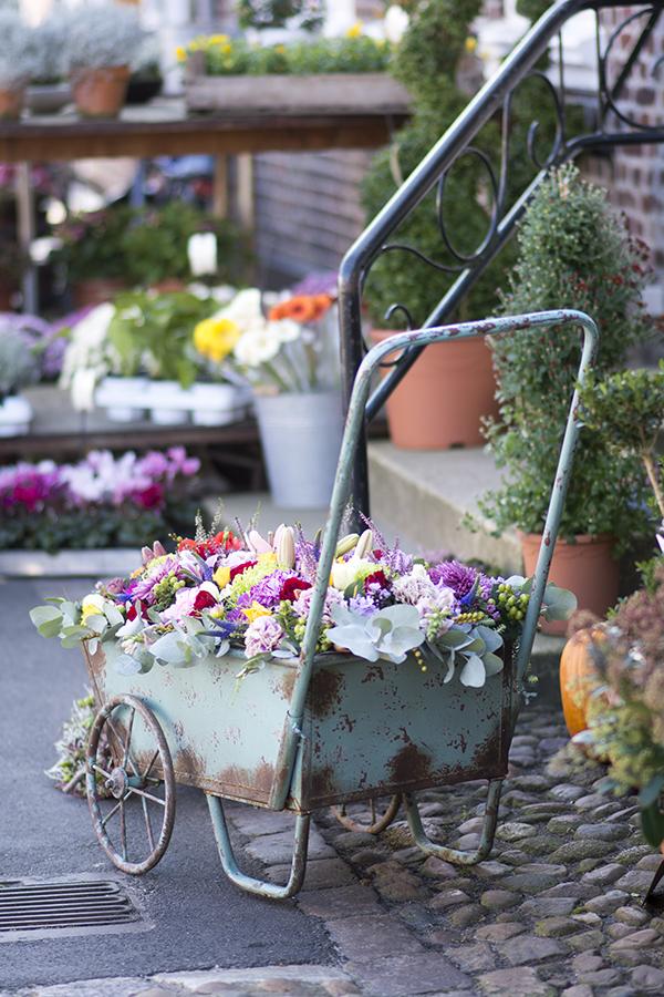 Fanø Blomster