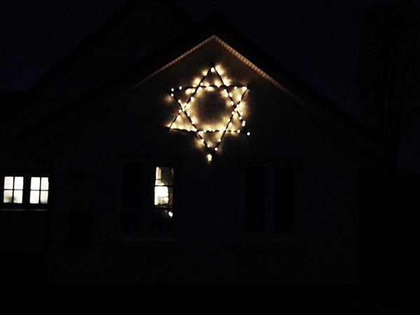 pileflet julestjerne
