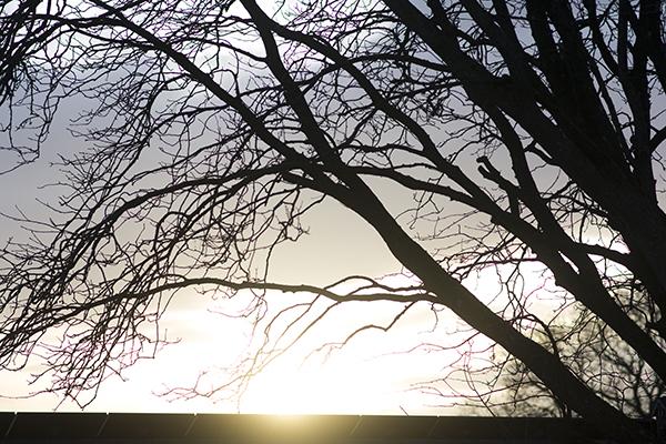 solnedgang bag solcellerne