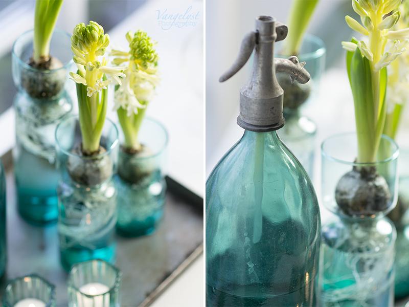 turkis stilleben hyacinter sifonflaske