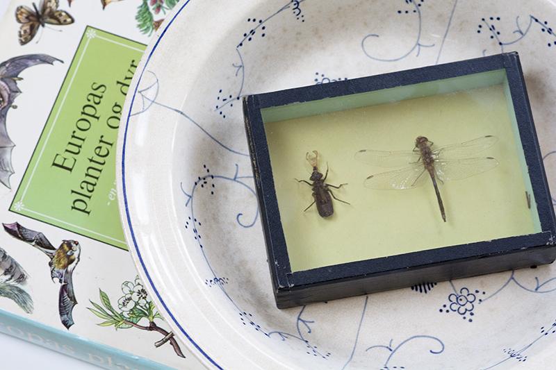 loppefund bog guldsmed musselmalet