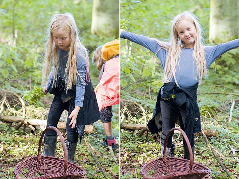 Alma- amler skovsyre surkløver - www.vangelyst.dk