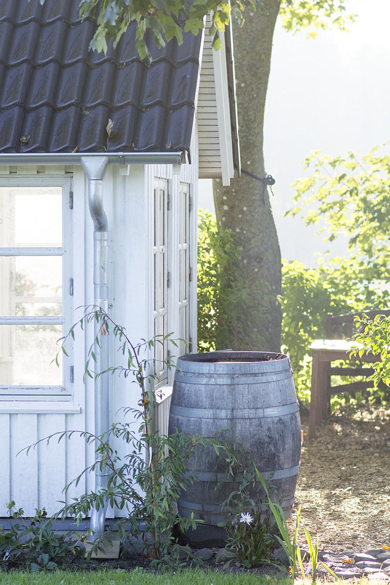 Regnvandstønde ved havehuset - www.vangelyst.dk