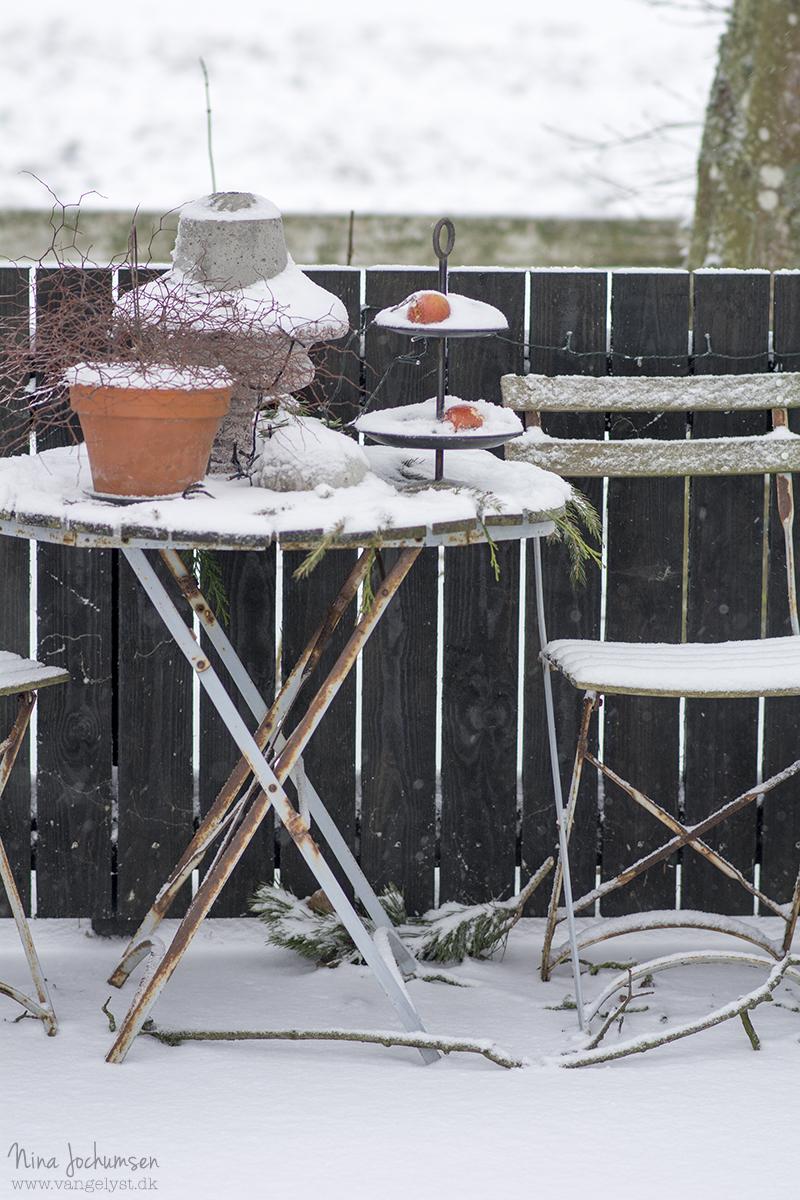 Vinteropstilling - www.vangelyst.dk