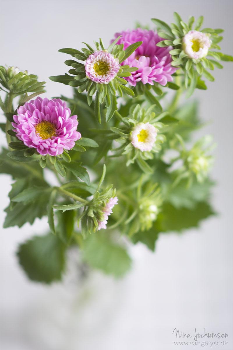 Pink buket blomster - www.vangelyst.dk