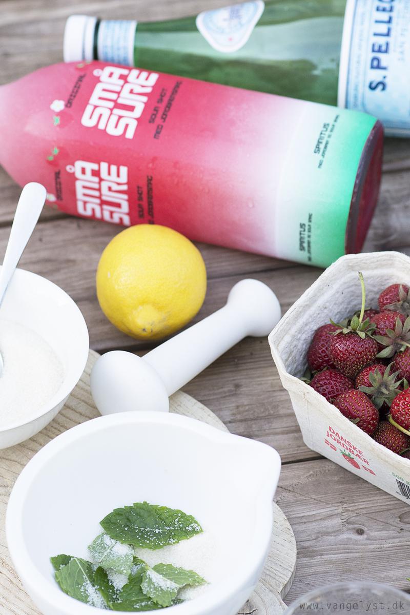 Små Sure Sour Mojito ingredienser - www.vangelyst.dk