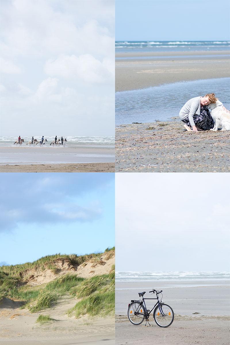 På stranden Fanø - www.vangelyst.dk