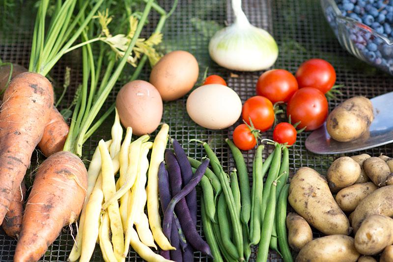 Grøntsager fra køkkenhaven