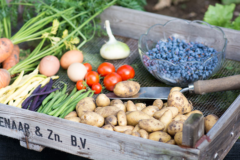 Hjemmedyrkede grøntsager fra køkkenhaven