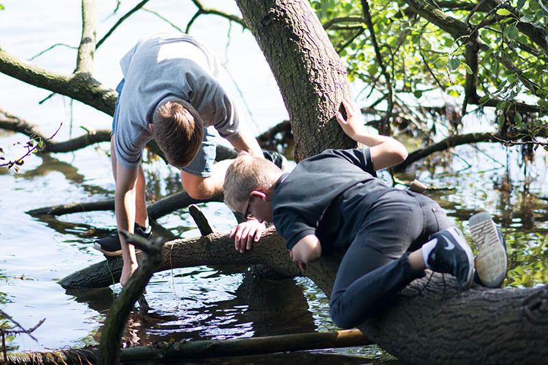 Karl og Magnus fanger fisk - www.vangelyst.dk