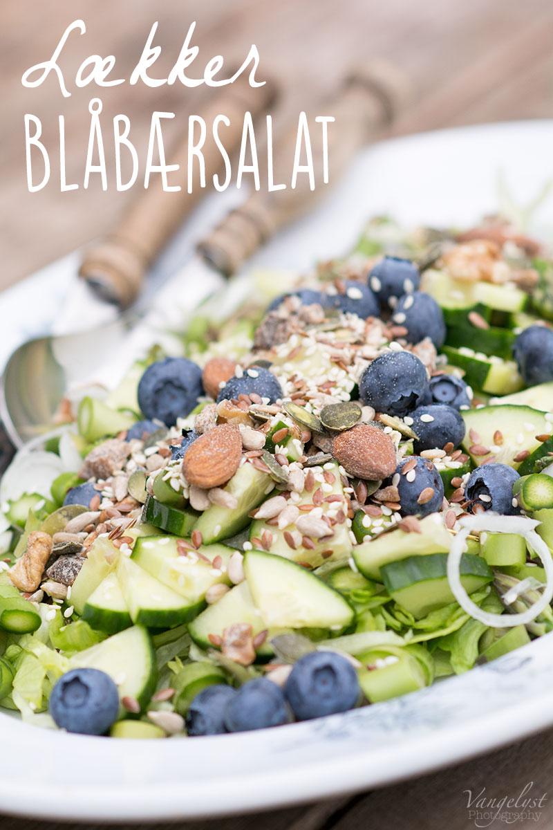 Lækker blåbærsalat - www.vangelyst.dk