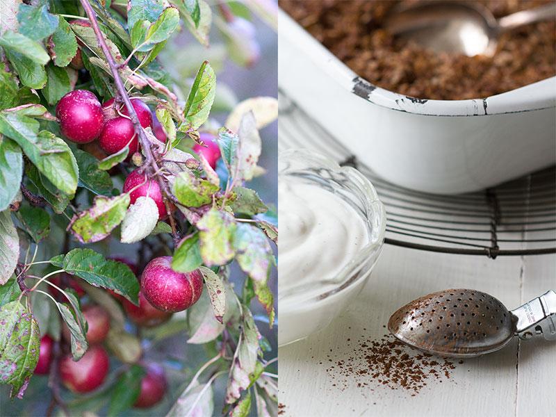 opskrift sund æblekage - www.vangelyst.dk