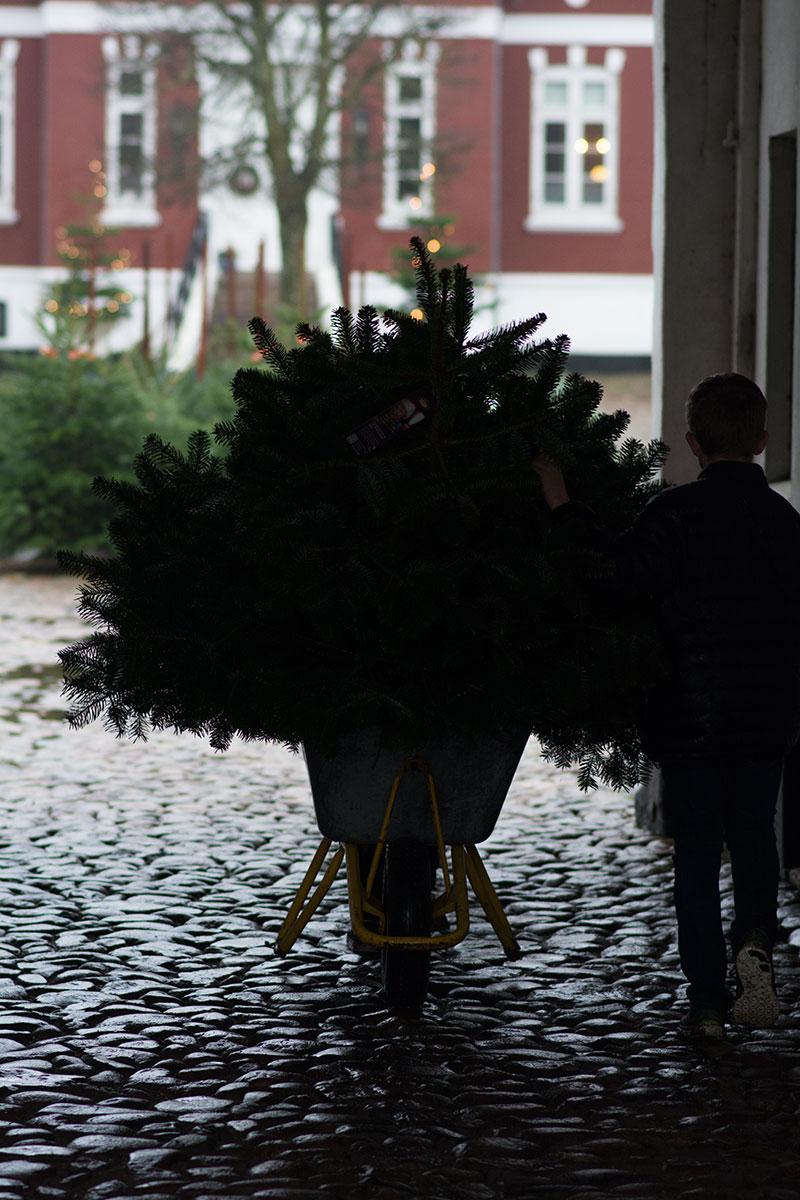 Juletradition - www.vangelyst.dk