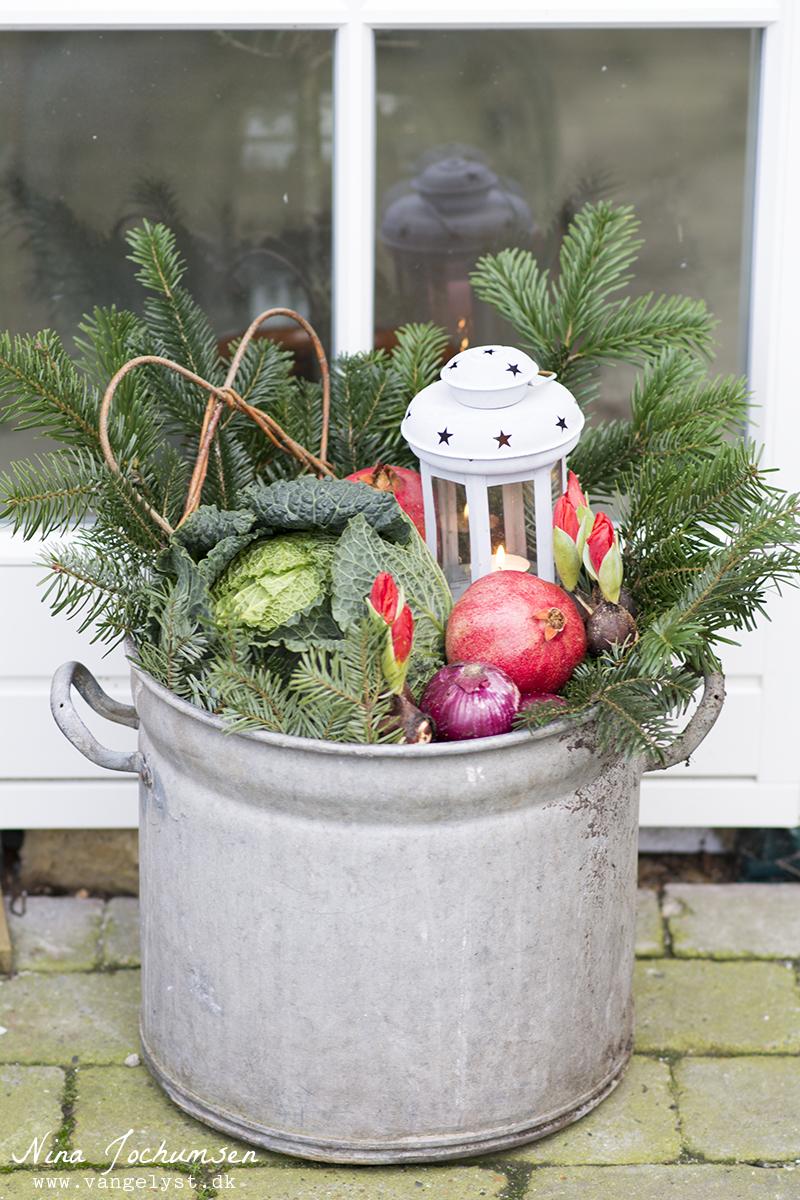 Udendørs juledekoration med kål og granatæble - www.vangelyst.dk
