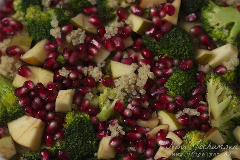 Opskrift på Quinoa salat - www.vangelyst.dk