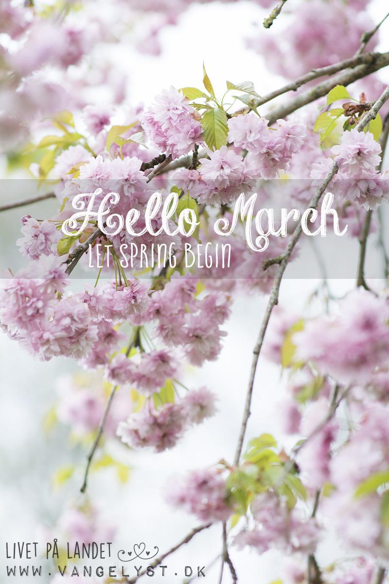 Hello March - forår 2016 www.vangelyst.dk