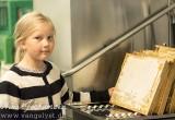 Honning slyngning 2016 - www.vangelyst.dk