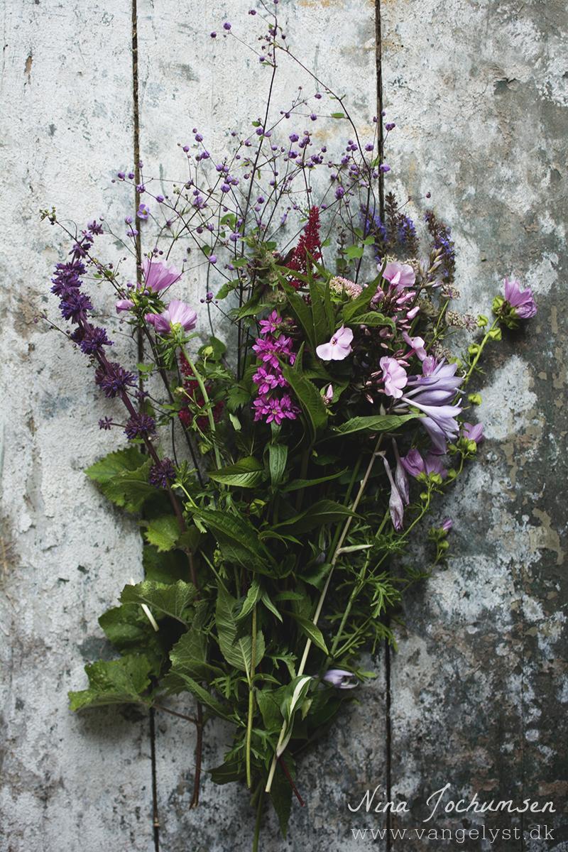 Vilde blomster fra haven - www.vangelyst.dk