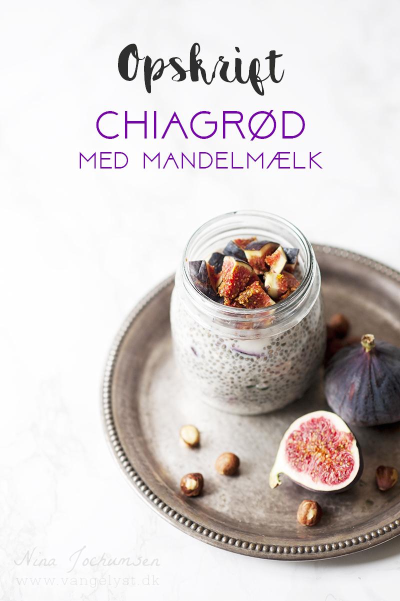 Opskrift på chiagrød med mandelmælk - www.vangelyst.dk