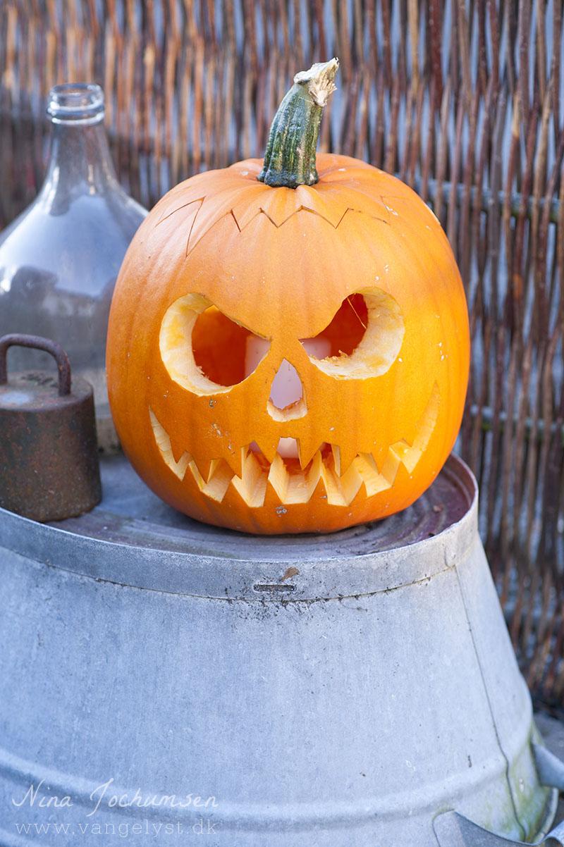 Uhyggelig græskar til Halloween - www.vangelyst.dk