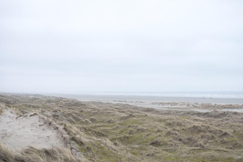 Fanø natur strand - www.vangelyst.dk