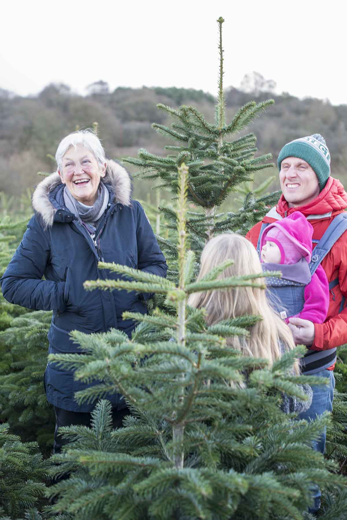 Juletradition juletræ - www.vangelyst.dk