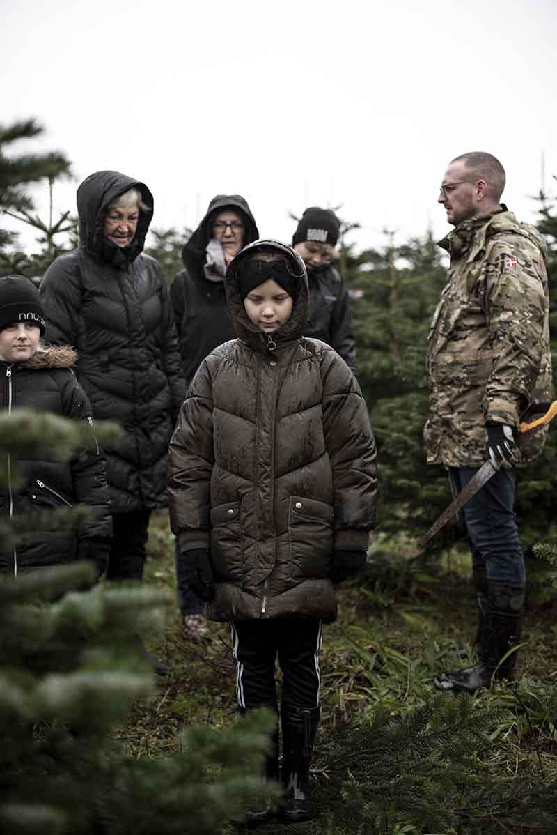 Familietradition med fæld-selv juletræ