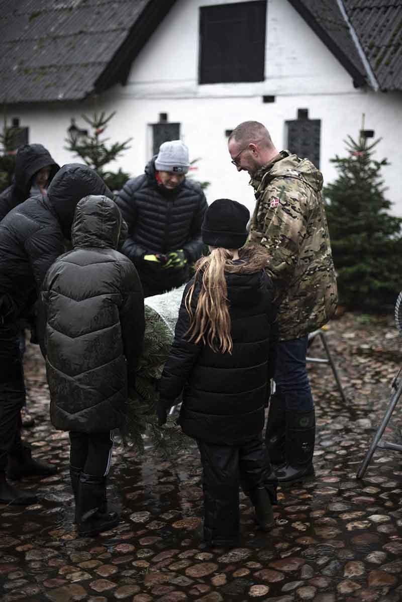 Juletraet hentes - www.vangelyst.dk