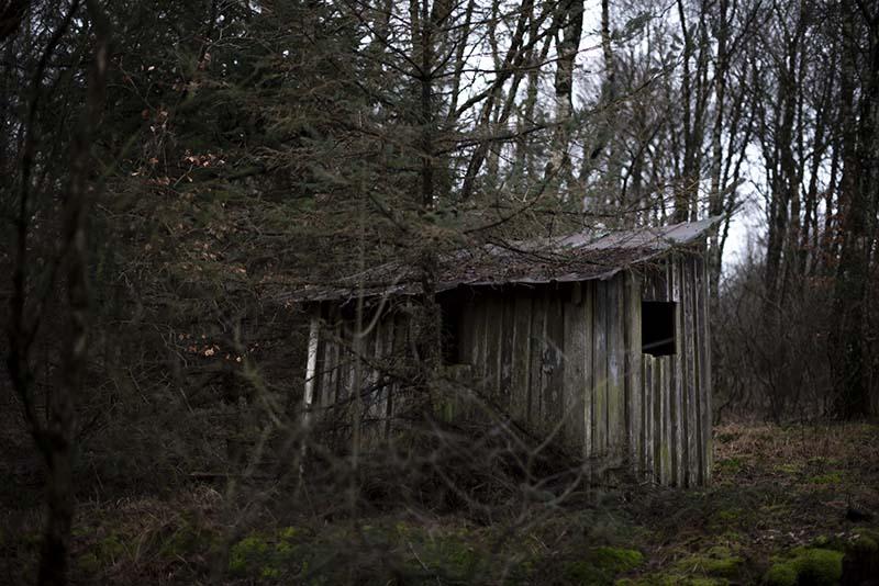 Jagthytte i skoven - www.vangelyst.dk