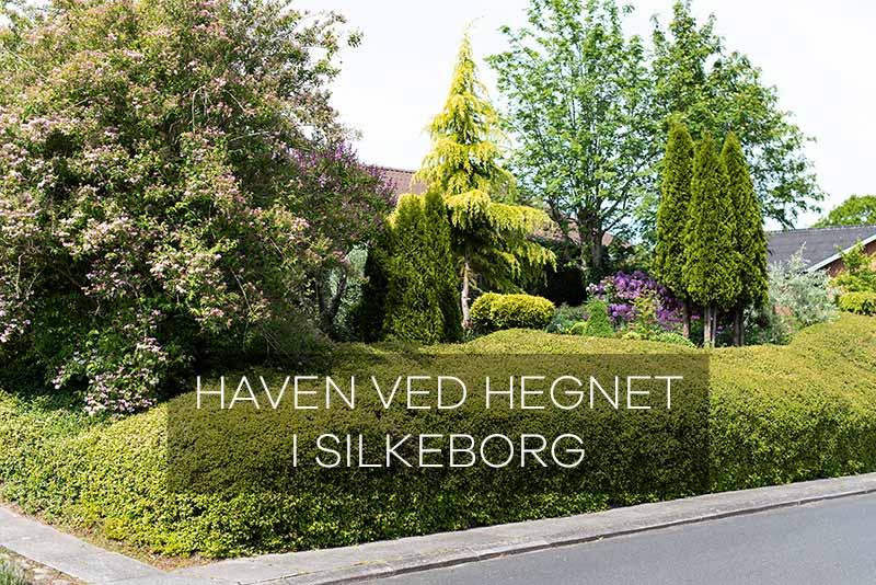 På havebesøg i Haven ved Hegnet i Silkeborg