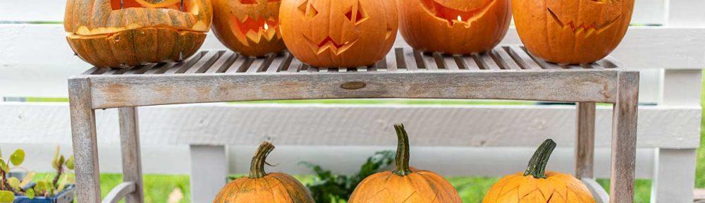 Halloween graeskar lygter - www.vangelyst.dk