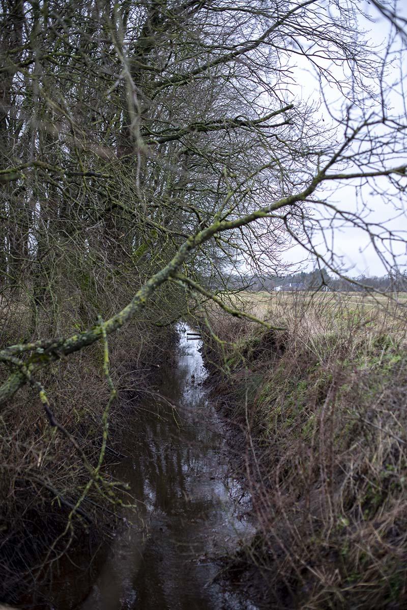 Vandløb i naturen